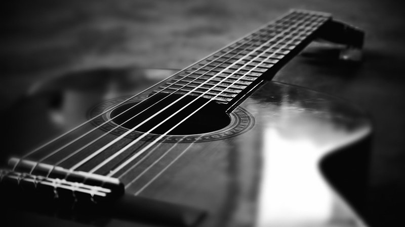 fingers and frets